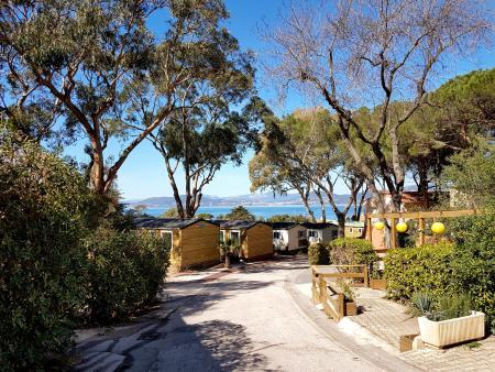 Camping Clair De Lune, Hyeres